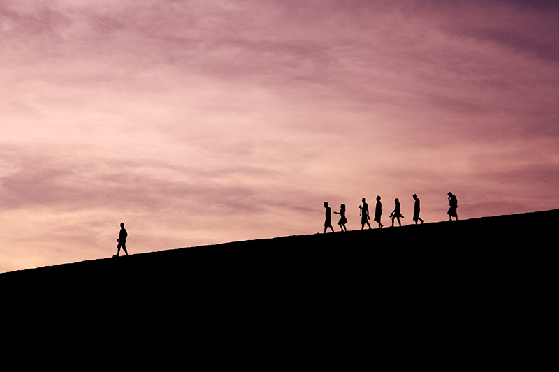 Build your team to learn and recover from adversity